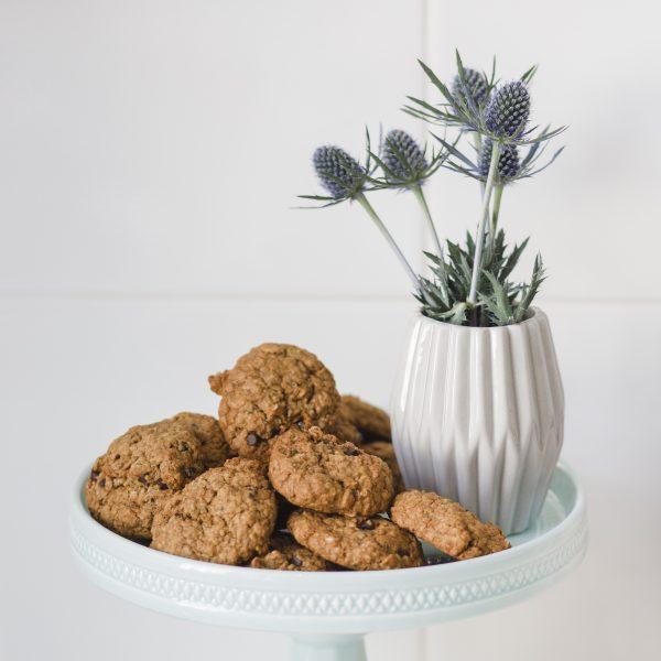 chocolate lactation cookies vegan dairy free